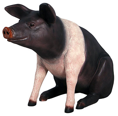 Resin Large Sitting Saddleback Pig